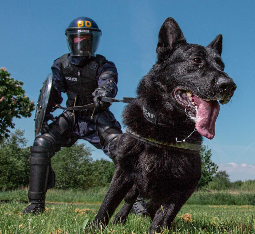 Heroic police dog, Zorro, retires from Lancashire police duty